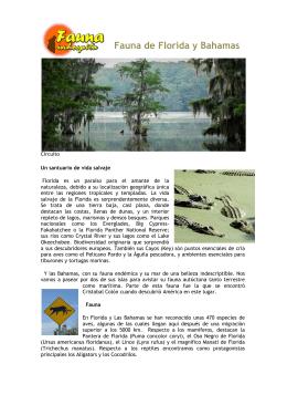 Fauna de Florida y Bahamas