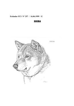 Estándar FCI N° 257 / 16.06.1999 / E SHIBA