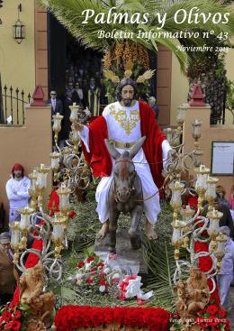 boletin noviembre nº 43 palmas y olivos 2013