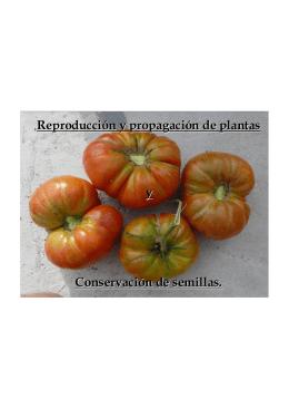 Reproducción y propagación de plantas y