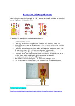 Recortable del cuerpo humano - capacitacionTIC-2011