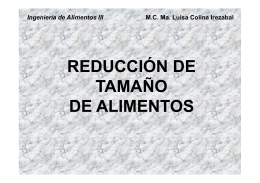 REDUCCION DE TAMAÑO. INTRODUCCIÓN (Pag. Web)