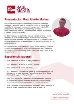 Presentación Raúl Martín Molina. Experiencia laboral: