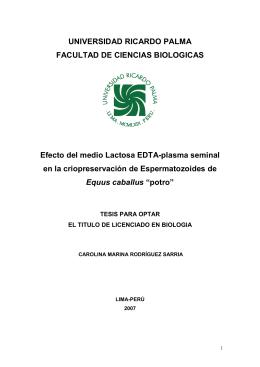 Descargar en PDF - Universidad Ricardo Palma