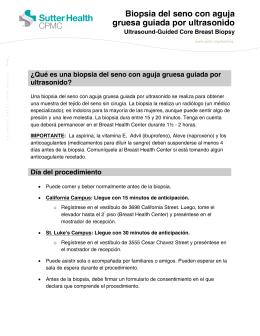 Biopsia Del Seno Con Aguja Gruesa Guiada Por Ultrasonido