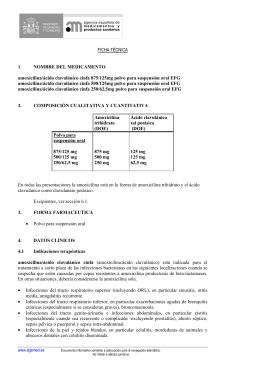 FICHA TÉCNICA 1. NOMBRE DEL MEDICAMENTO amoxicilina