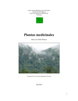 Plantas medicinales - Centro de Entendimiento con la Naturaleza
