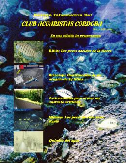 Revista Electronica del CAC (Número 2)