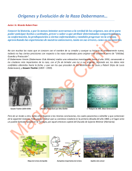 Orígenes y Evolución de la Raza Dobermann Rv