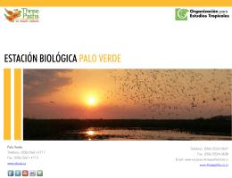 ESTACIÓN BIOLÓGICA PALO VERDE