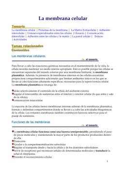 La membrana celular - Portal Académico del CCH