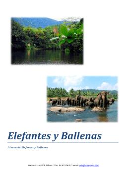 Elefantes y Ballenas