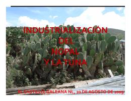 INDUSTRIALIZACIÓN DEL NOPAL Y LA TUNA