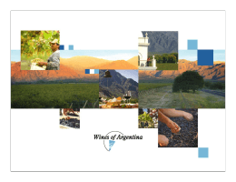 Estrategia General de Wines of Argentina