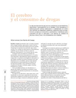 El cerebro y el consumo de drogas
