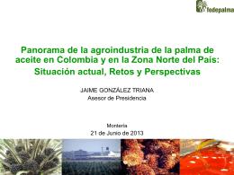 Panorama de la agroindustria de la palma de aceite en