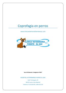 Coprofagia en perros - Hospital Veterinario Fuente el saz