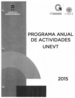 programa anual de actividades unevt 2015