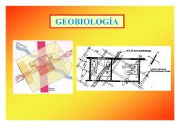 Descargar presentación sobre Geobiología dando clic aquí