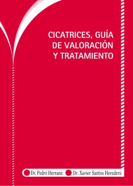 Cicatrices, guía de valoración y tratamiento. (PDF 845Kb)