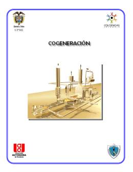 Eficiencia Energética en Cogeneración