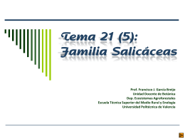 Familia Salicáceas - Escuela Técnica Superior de Ingenieros