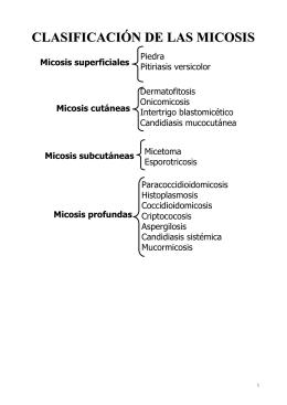 micologia apunte