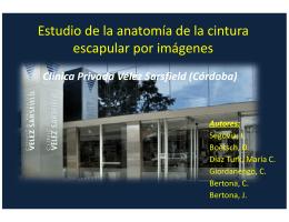 Estudio de la anatómia de la cintura escapular por imágenes