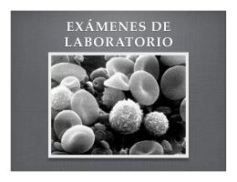 Examenes laboratorio