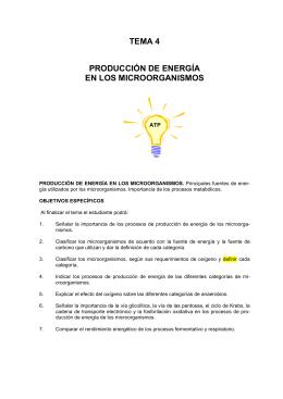 TEMA 4 PRODUCCIÓN DE ENERGÍA EN LOS MICROORGANISMOS