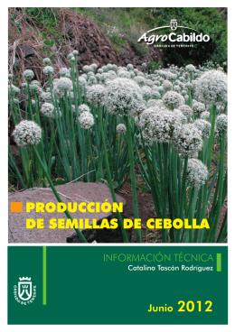 PRODUCCIÓN DE SEMILLAS DE CEBOLLA