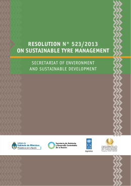 RESOLUTION N° 523/2013 ON SUSTAINABLE TYRE MANAGEMENT