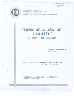 Suelos de la Mesa de Guanipa. El Tigre, Estado Anzoátegui