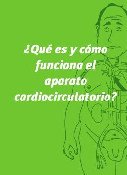 ¿Qué es y cómo funciona el aparato cardiocirculatorio?