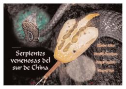 Serpientes venenosas del sur de China