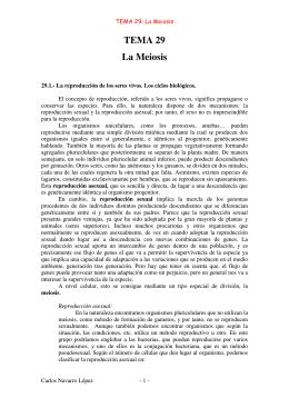 TEMA 29 La Meiosis