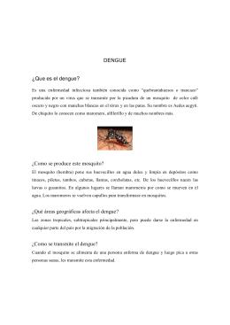 DENGUE ¿Que es el dengue? ¿Como se produce este mosquito