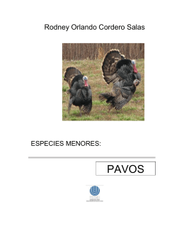 Modulo pavos resumido - Repositorio de la Universidad Estatal