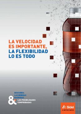 CSD Brochure Spanish