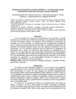 Guajolotes de traspatio en el trópico de México