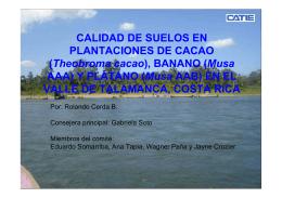 CALIDAD DE SUELOS EN PLANTACIONES DE CACAO