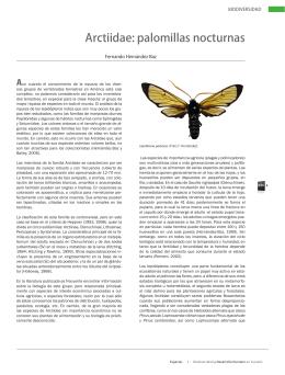 Arctiidae: palomillas nocturnas. Formato PDF