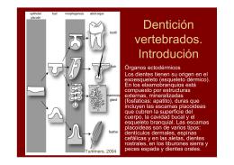 Dentición vertebrados. Introdución