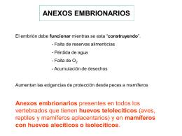 Teórica 9: anexos extraembrionarios