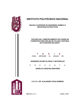 SANCHEZ MARTINEZ - Instituto Politécnico Nacional