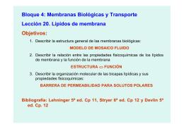 Bloque 4: Membranas Biológicas y Transporte Lección 20
