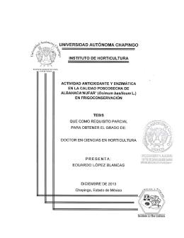 `NUFAR` (Ocimum basilicum L.) - Universidad Autónoma Chapingo