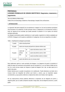 PROTOCOLO: LESIONES PERINEALES DE ORIGEN OBSTÉTRICO