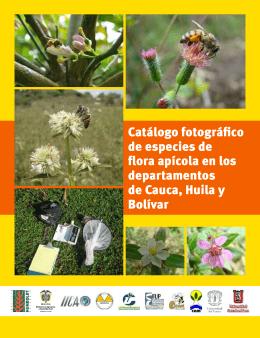 Catálogo fotográfico de especies de flora apícola en los