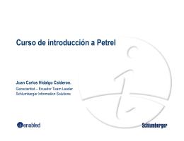 Curso de introducción a Petrel